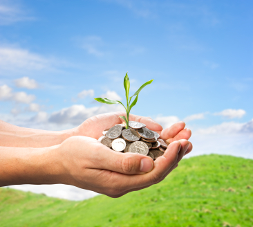 Cultivating your money tree